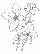 Coloring Pages Columbine Flowers Flower Printable Recommended Colors Template sketch template