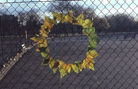 andy goldsworthy working  time dop