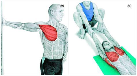 34 bildes, kas ilustrē, kuri muskuļi tiek pastiepti ...