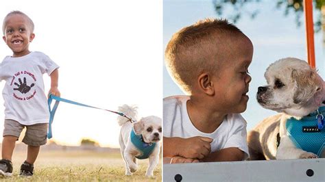 dog helps  year  boy  dwarfism stand tall