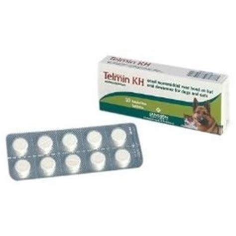 telmin kh hundkatze  tabletten   outdoor