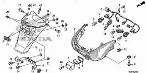 Honda Scooter 2011 Oem Parts Diagram For Taillight    Rear