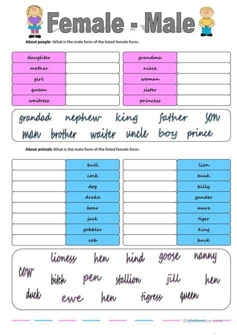 gender female male worksheet  esl printable