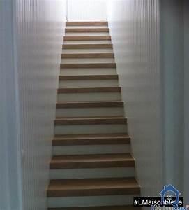 Recouvrir Marche Escalier : recouvrir escalier amazing pose sur carrelage r novation ~ Premium-room.com Idées de Décoration