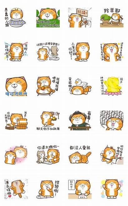 Cat Lan Move Stickers Line Whatsapp Sticker