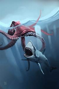 Giant Octopus Attacks Shark