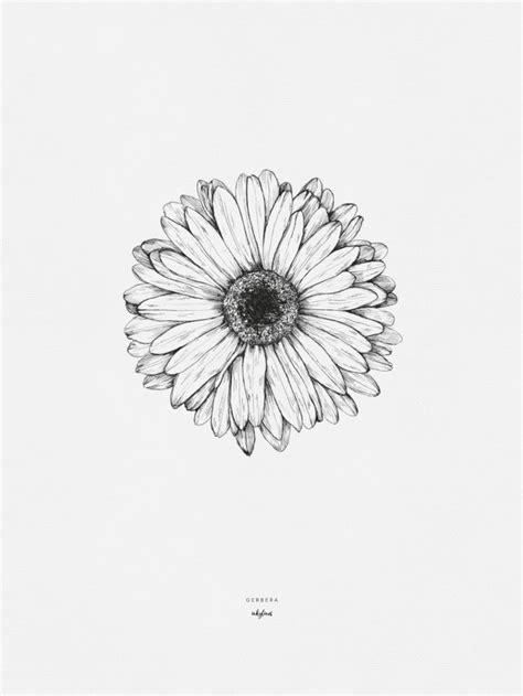 Gerbera   Sunflower tattoos, Gerbera daisy tattoo, Tattoo