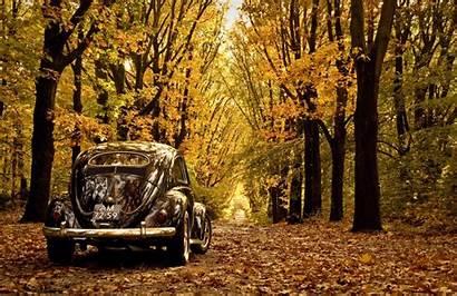 Beetle Classic Volkswagen Wallpaperlepi Vw Wallpapersafari Code