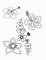 Coloring Pages Flower Hawaiian Tropical Luau Hawaii Printable Themed Plumeria Flowers Drawing Party Templates Colouring Sheets Adult Tattoos Popular Tattoo sketch template
