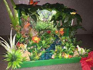 Our Rainforest Diorama for kindergarten! We got everything ...
