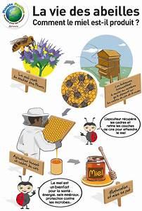 Comment Faire Une Ruche : une ruche comment a marche des cultures pour les abeilles et des abeilles pour les cultures ~ Melissatoandfro.com Idées de Décoration