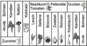 Hochbeet Bepflanzen Im 1 Jahr : carsten hauschild garten hochbeet ~ Frokenaadalensverden.com Haus und Dekorationen