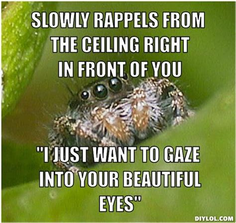 Spider Memes - i m terrified of spiders but maybe its because i misunderstand them misunderstoodspider lulz