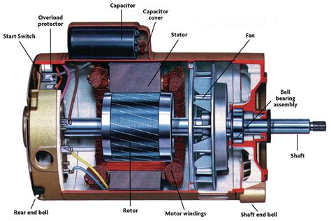 Bearing Replacements| Pool & Spa News