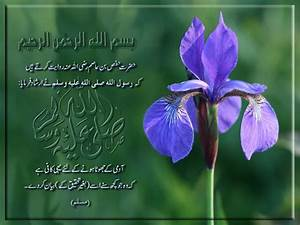 Hadees Of The Day ( Daily Update ) - Page 13 - Urdu Planet ...