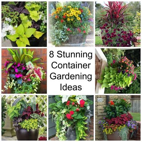 8 Stunning Container Gardening Ideas Home And Garden