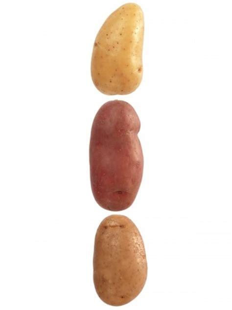 Quelle Pomme De Terre Choisir Pour Raclette by Quelle Pomme De Terre Choisir Pour Quelle Utilisation