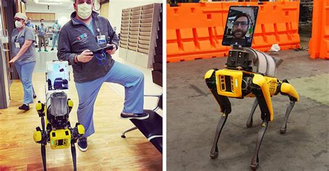 robotic dog  boston dynamics  helping doctors