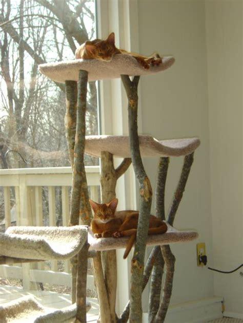 arbre a chat arbre 224 chat en bois