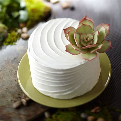 How To Use Cake Decorating Tips by Succulent Topped Cake Wilton
