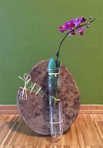 Basteln Mit Baumscheiben : reagenzglas auf baumscheibe reagenzgl ser deko ~ Watch28wear.com Haus und Dekorationen
