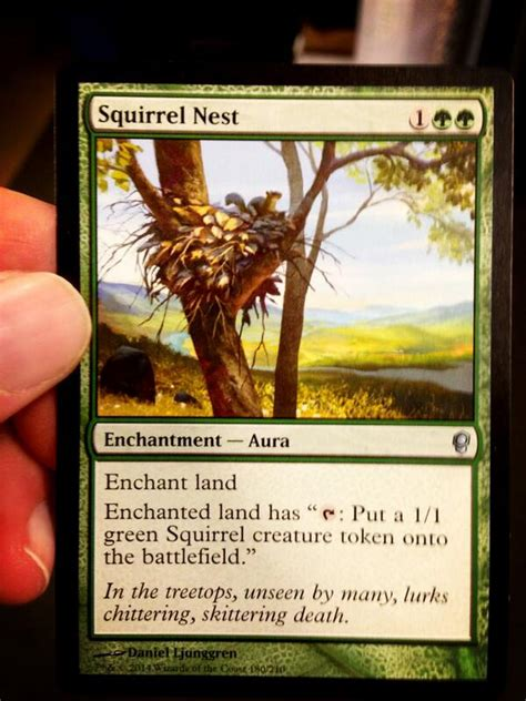 squirrel deck mtg 2015 squirrel nest speculation