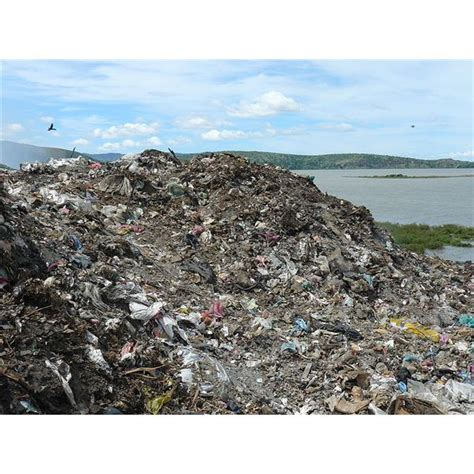 What is Solid Waste: Pollution Effects of Solid Waste