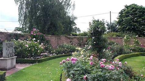 david garden david austin english rose gardens stroll summer 2011 youtube