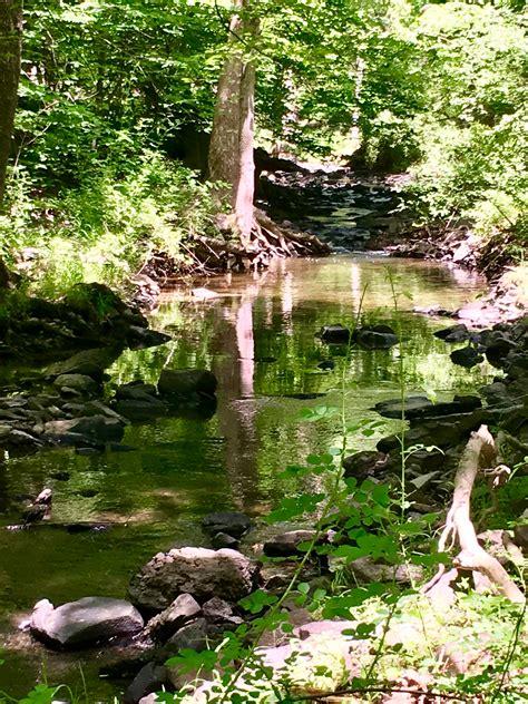 rocky brook trail  jersey trails association