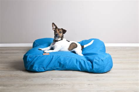 cuscini cani cuscini per cani comfort e stile per i vostri cuccioli