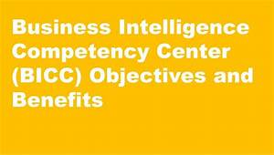 Guide To Business Intelligence Competency Center  Bicc