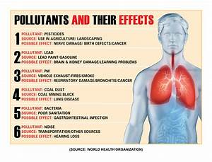 Effects Of Land Pollution On Human Health | www.pixshark ...