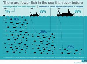 Can The Wto Curb Dangerous Overfishing