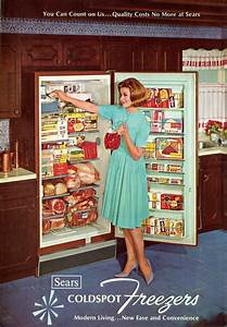 30 Best Fridge Images On Pinterest