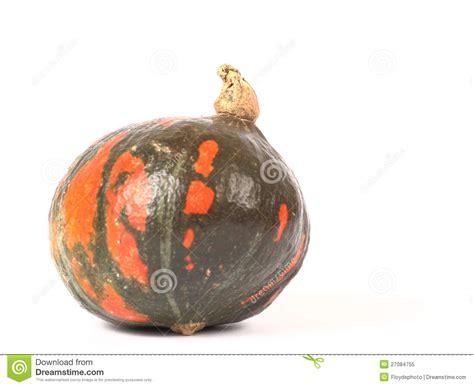 Kuerbis Dekorationsideenkuerbisse Mit Punkten by Gr 252 Ner K 252 Rbis Mit Orange Punkten Lizenzfreies Stockfoto