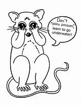Possum Coloring Eyes Pages Closed Drawing Drawings Luna Opossum Getcoloringpages Printable Hanging sketch template