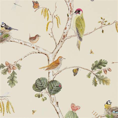 designer wallpaper  store  usa canada bird