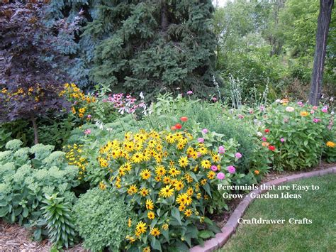 easy growing perennial flowers perennials made easy how to create and grow amazing gardens