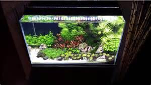 Le Led Aquarium Plantes by Perfect Color For Planted Tanks Current Usa