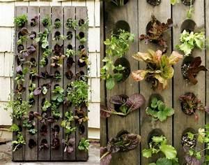 Balkon Gestaltungsideen Pflanzen : balkon pflanzen coole platzsparende ideen ~ Lizthompson.info Haus und Dekorationen