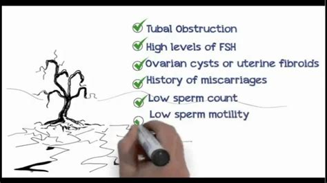 How To Get Pregnant Fast With Irregular Periods Howstoco