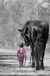 schwäche stärke hat es nicht nötig schwäche auszunutzen schöne sprüche horses and hats