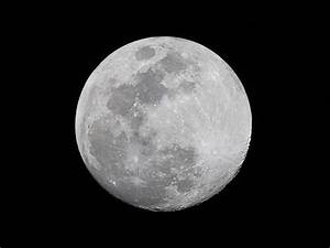 Jardiner Avec La Lune : jardiner avec la lune le monde de marie ~ Farleysfitness.com Idées de Décoration