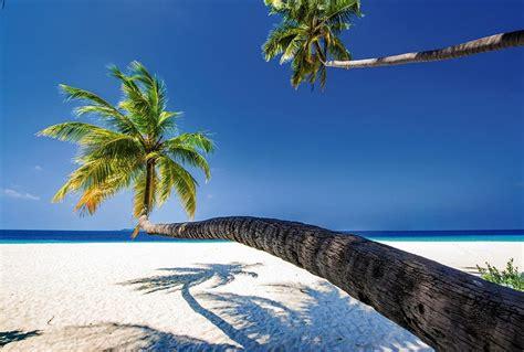 deco chambre mer poster grand format palmier en trompe l 39 oeil paysage océan