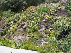 au jardin une rocaille comme a la montagne With jardin en pente que faire 4 amenager un jardin de montagne avec une rocaille