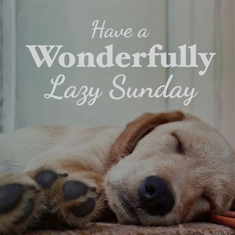 25+ Best Lazy Sunday Quotes On Pinterest  Lazy Day Quotes