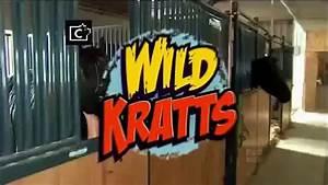 Wild Kratts Zig Zagged 2014 2014 - Dailymotion Video