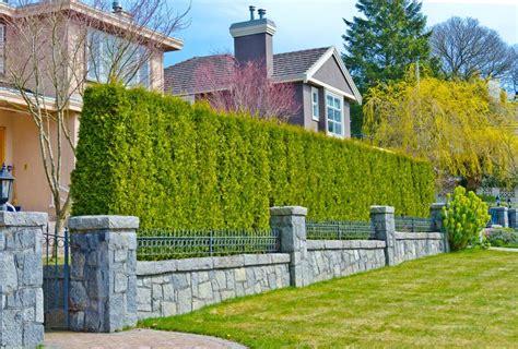 kombinasi segar pagar modern klasik  elemen hijau pt