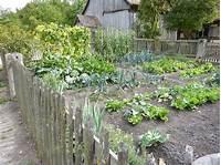 vegetable garden plans Vegetable Gardening 101: TOP 10 Mistakes To Avoid | INSTALL-IT-DIRECT