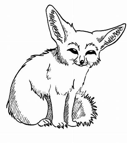 Fox Desert Coloring Pages Clipart Fennec Drawing